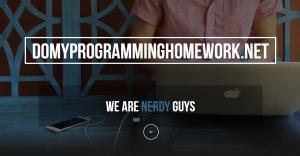 DoMyProgrammingHomework.net Review