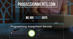 ProgAssignments.com Review